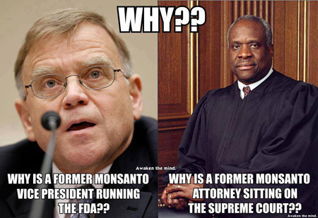 Picture of Former Monsanto VP running the FDA and a picture of former Monsanto Attorney sitting on the Supreme Court