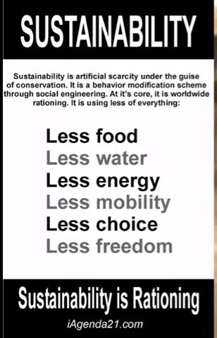 What sustainability means